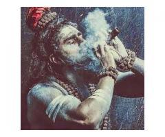 Vashikaran Specialist Aghori Baba Ji +91-9501629740