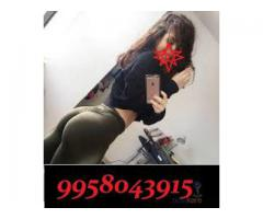 Call Girls In Delhi Escort Service Pira Garhi 09958043915 Shot 2000 Night 7000